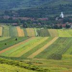 РАСЧЕТ  корректировки на площадь для  земельных участков сельскохозяйственного назначения  в Республике Татарстан